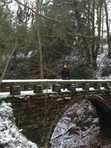 A dog walk in Styal Woods