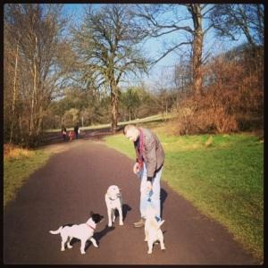 Dog Walking Chorlton Water Park