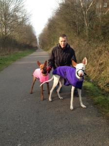 Dog Walking Fallowfield