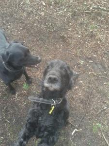Arthur & Maddie