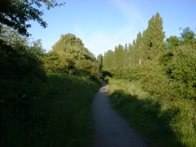 chorlton-ees-path-ecotherapy sessions manchester wales cheshire lancashire derbyshire england united kingdom